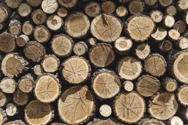6 ideias práticas para galpões de madeira